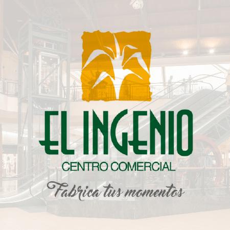 Imagen principal de El Ingenio